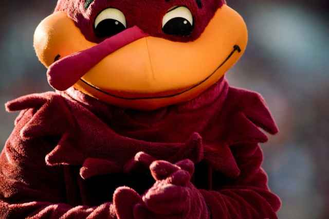 The HokieBird welcomes our Accepted Students