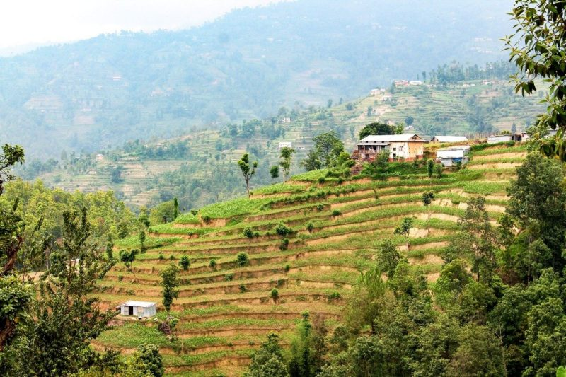 Program prepares farming communities in Nepal for impacts of a changing climate